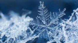 Close-up of snowflake.
